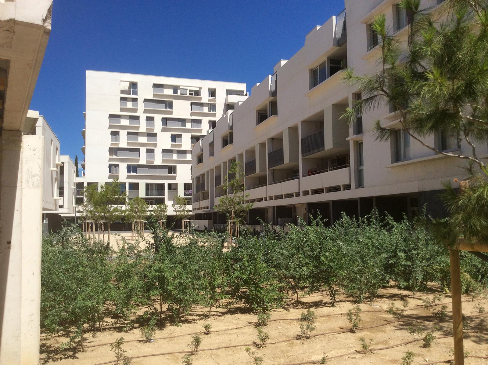11-germe-et-jam-MTG-marseille-logements-vue-cour-interieure