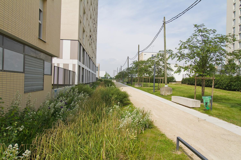 Une allée vers les Tartres – Tour réhabilitée (architectes Léornard et Weismann)
